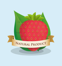 Strawberry natural product ribbon design vector