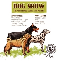 Dogs show vector