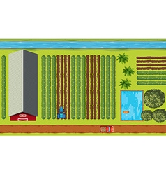 Top view of farmland with crops vector