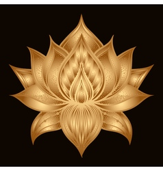 Pattern with lotus flowers hand drawn vector image