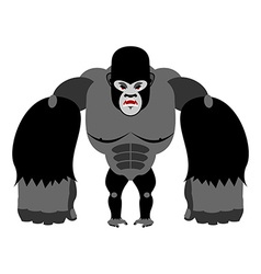 Angry gorilla on its hind legs aggressive monkey vector