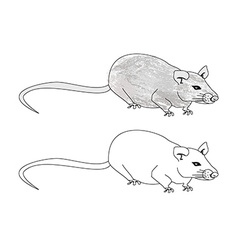 cartoon rat doodle vector image vector image