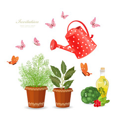 Different herbs planted in flowerpots and fresh vector