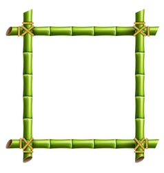 Green bamboo frame isolated on white vector