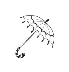 hand drawn umbrella vector image