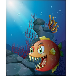 Scary piranha under the sea near the rocks vector