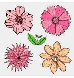 Set of hand drawn colorful flowers and leaf vector
