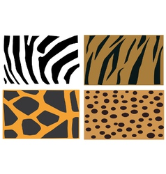 Animal fur patter vector image vector image