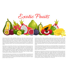 information poster tropical exotic fruits vector image vector image