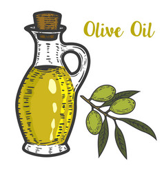 Olive oil design element for logo label emblem vector