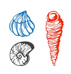 sea marine shells hand drawn sketch vector image vector image