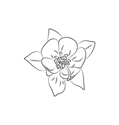 Beautiful fuchsia flower simple black lined icon vector