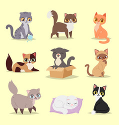 Cute cats kitty pet adorable character different vector