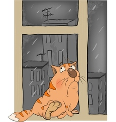 A kitten in the rain in the autumn vector