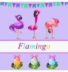 Fancy flamingos and colorful gift eggs vector