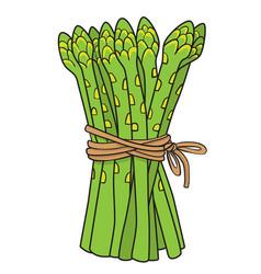 Cartoon image of asparagus vector