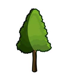 Tree foliage wood organic botanic garden shadow vector