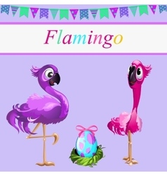 Love flamingos parents and their egg vector