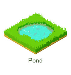 pond icon isometric style vector image vector image
