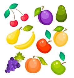 Fruit set isolated on white vector
