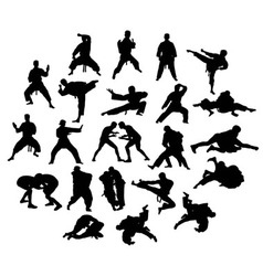 Silhouette of martial arts vector