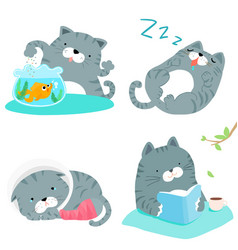 Gray cat variety action pack vector