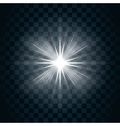 sparkle light star 7 vector image