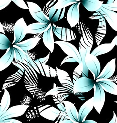 Tropical white frangipani hibiscus with black vector image vector image