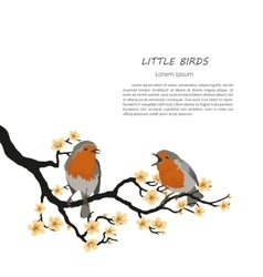 Two birds sitting on a flowering branch vector