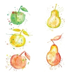 Watercolor fruit set with blots vector