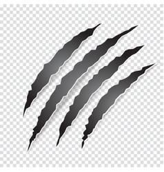 Claws scratches animal or monster on transparent vector