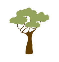Green tree african natural forest flora vector