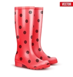 Pair of red rain boots vector
