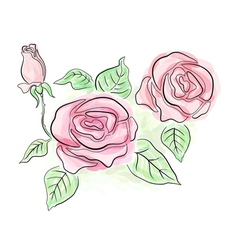 Sketch of roses in light delicate colors vector image