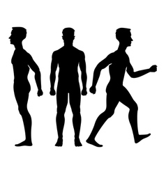 Collection silhouettes of man in front and side vector