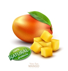 Ripe mango fruit with slices on a white background vector