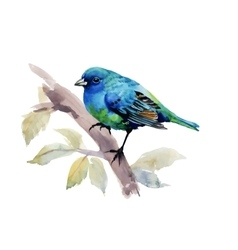 Exotic bird on tree branch on white background vector
