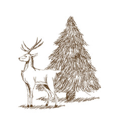 Christmas deer and tree engraving style vintage vector