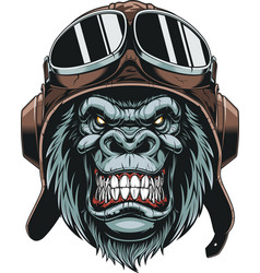 Monkey in helmet pilot vector