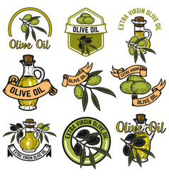 set of olive oil labels design elements for logo vector image