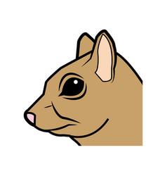 cute squirrel head eats nut nature wildlife image vector image
