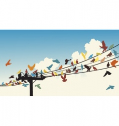 Bird roost vector