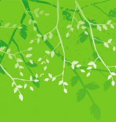 Floral background branches of the tree vector