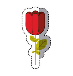 Red rose with square petals icon vector
