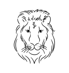 head of the lion vector image