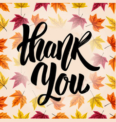 thank you hand drawn lettering on background with vector image vector image