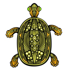 Fancy Turtle vector image