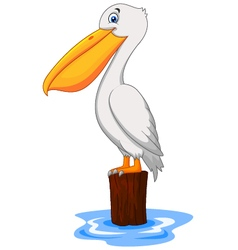 Cartoon pelican in the bay vector