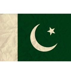 Pakistan paper flag vector