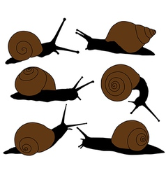 Snail silhouette vector